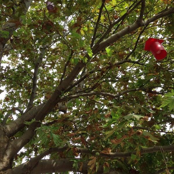 Foto tirada no(a) Adanın Bahçesi Zübeyde Hanım por Kivanc K. em 9/6/2014