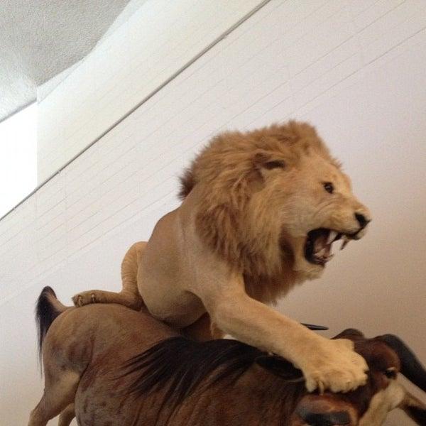 Foto tirada no(a) Las Vegas Natural History Museum por Dennis M. em 12/1/2012
