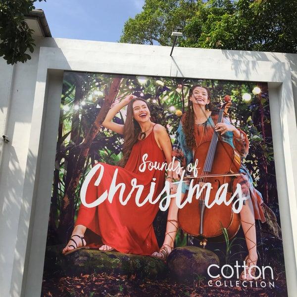 Photos at Cotton Collection - 12 tips