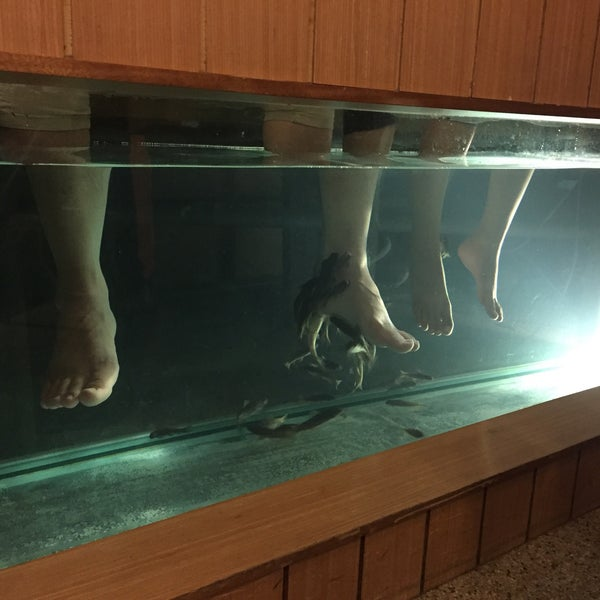 Foot Master, Dr  Fish Spa - Subang Jaya, Selangor