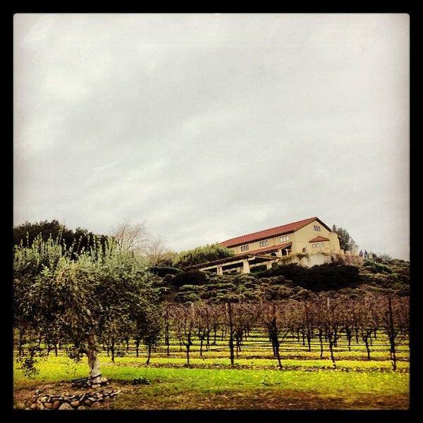 Das Foto wurde bei Gloria Ferrer Caves & Vineyards von anjelika am 1/5/2013 aufgenommen