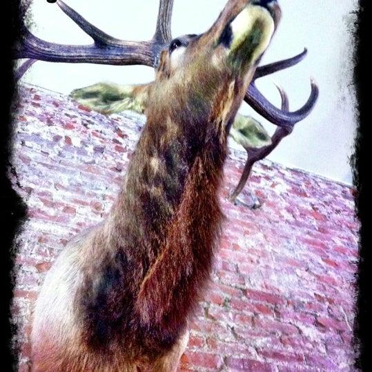 Das Foto wurde bei Eagle Street Grille von Sarlita am 11/12/2012 aufgenommen