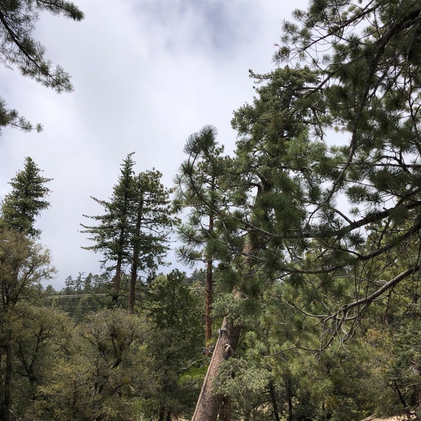 Photos at Thousand Trails Idyllwild - Campground in Idyllwild