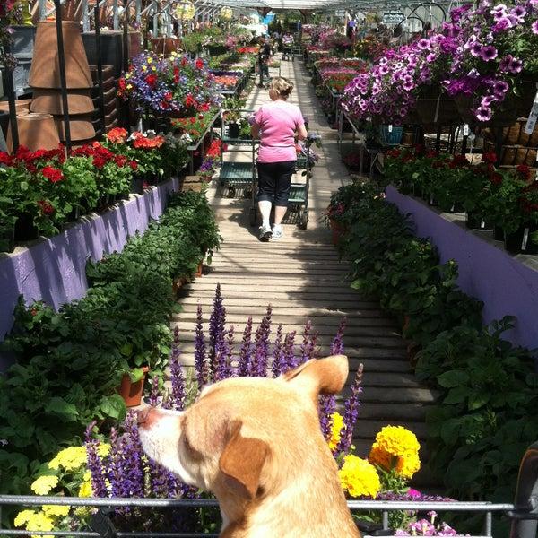Foto tirada no(a) Nick's Garden Center & Farm Market por Abby W. em 6/8/2013