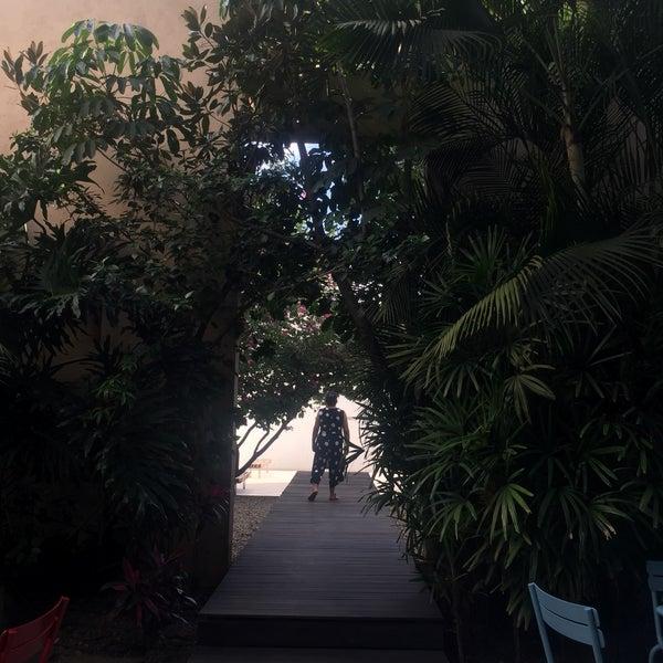 Museo muy único en su tema, los espacios verdes son muy fotogénicos