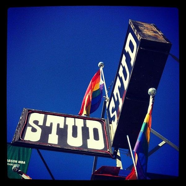 Gay stud tpg
