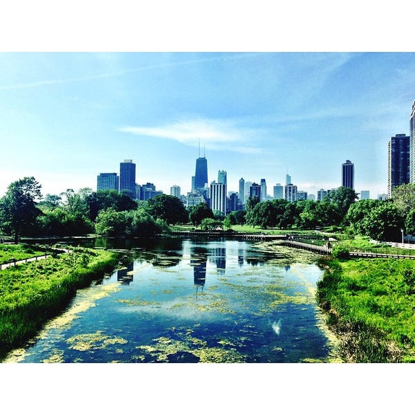 Lincoln Park Chiropractic - Chiropractor in Chicago