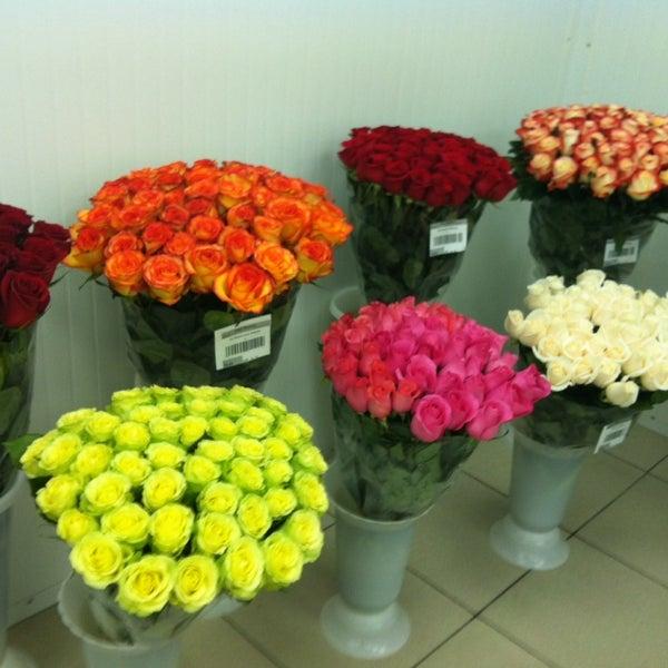 Владивосток, цветы столицы цены минск