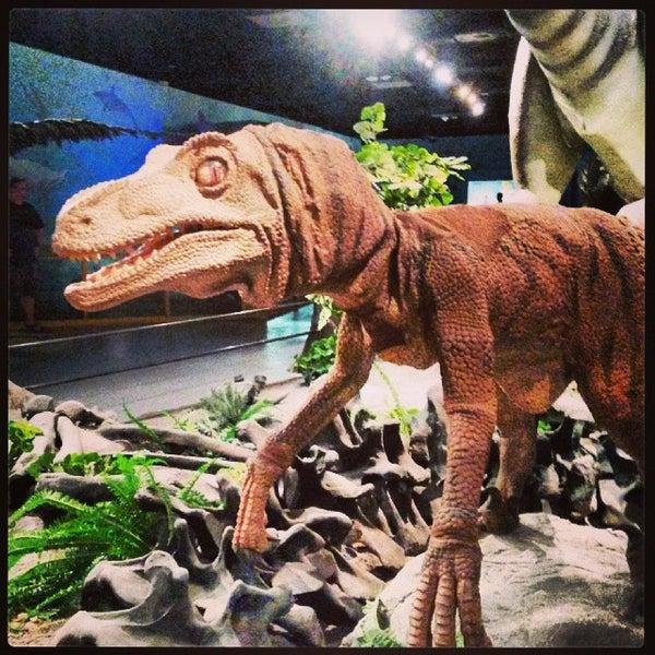 Foto tirada no(a) Las Vegas Natural History Museum por Heather V. em 4/27/2014