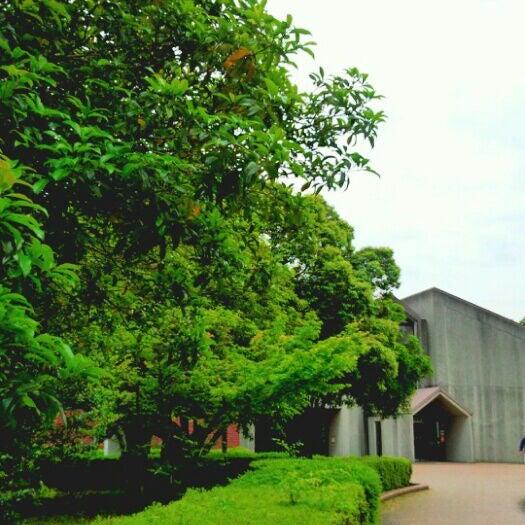 羽生 図書館