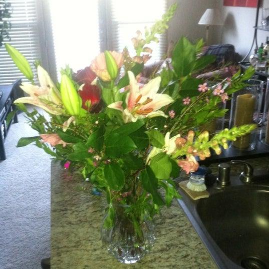 รูปภาพถ่ายที่ Terilli's โดย Catherine P. เมื่อ 4/20/2012