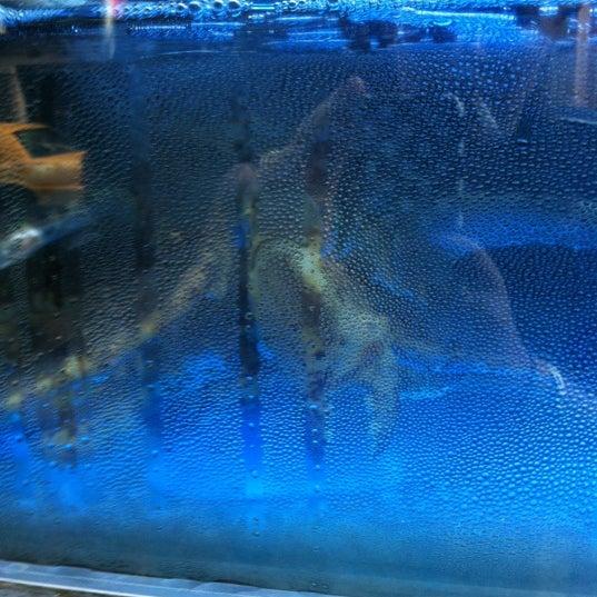 11/18/2012에 Laura H.님이 Oriental Garden 福臨門海鮮酒家에서 찍은 사진