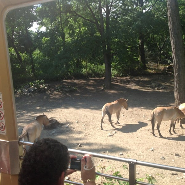 Photos at Wild Asia Monorail - Zoo in Bronx