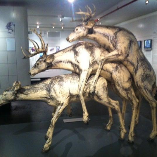 9/16/2012에 Gigi S.님이 Museum of Sex에서 찍은 사진