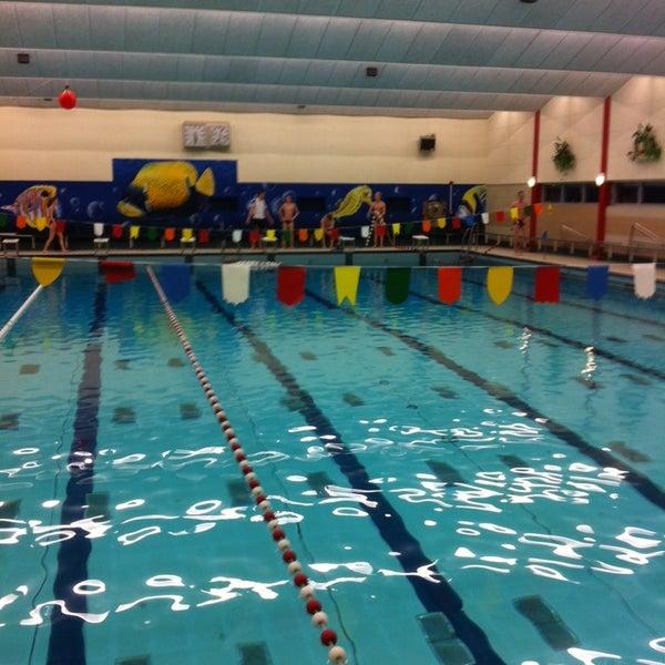 photos à zwembad de parrel - piscine à selwerd