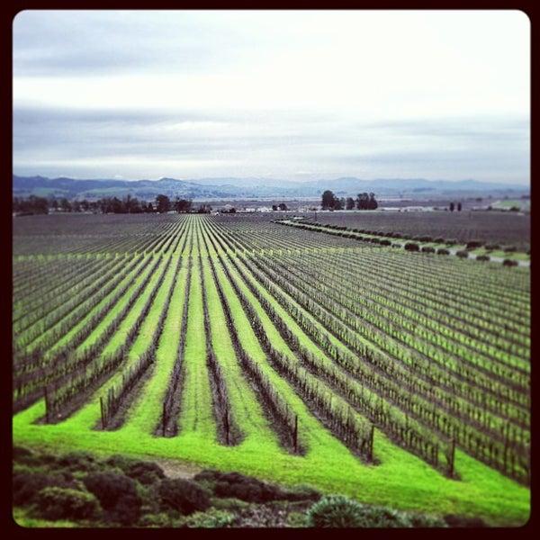 Das Foto wurde bei Gloria Ferrer Caves & Vineyards von Brandon P. am 12/28/2012 aufgenommen