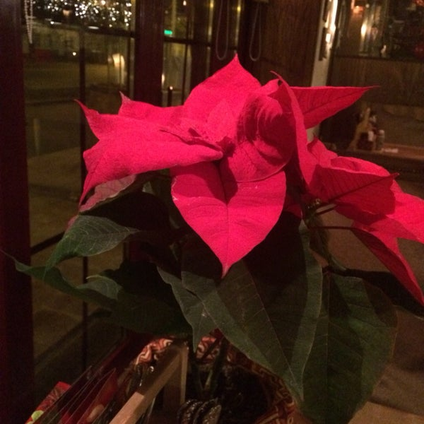 В последнее посещение ждать официанта пришлось оооочень долго((
