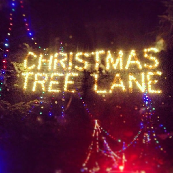 Christmas Tree Lane Fresno.Photos At Christmas Tree Lane Now Closed Fresno High
