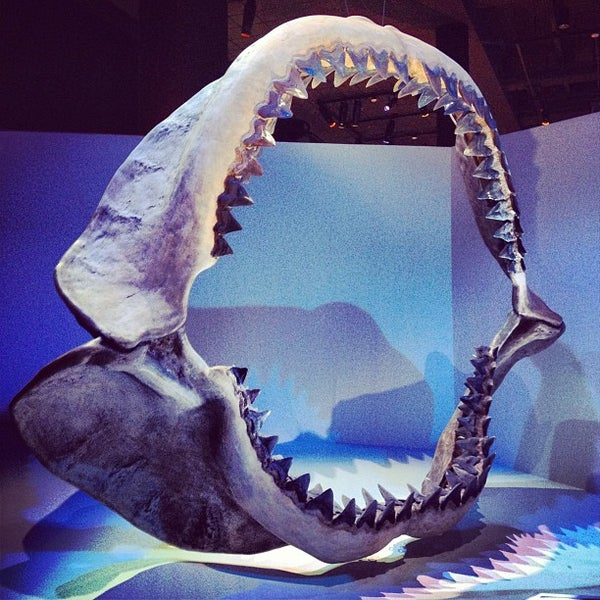 Foto scattata a Houston Museum of Natural Science da Brian G. il 9/15/2012