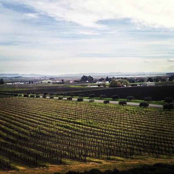 Das Foto wurde bei Gloria Ferrer Caves & Vineyards von John D. am 3/7/2013 aufgenommen
