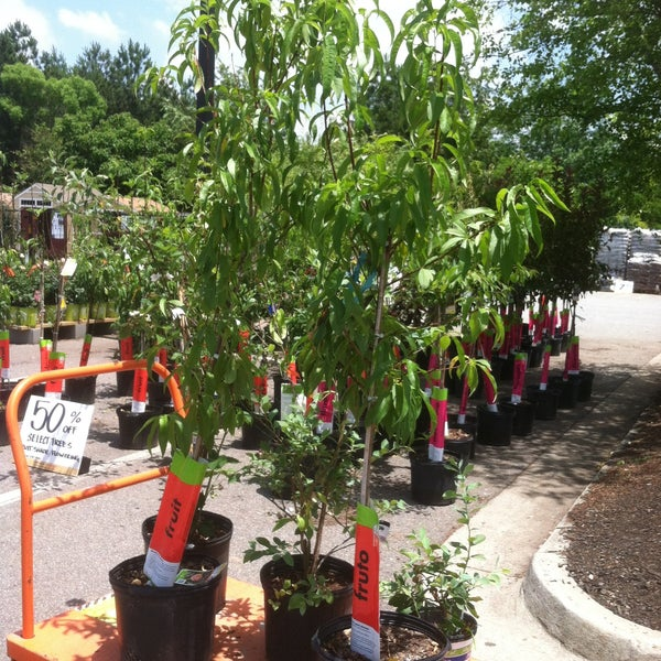 Photos At The Home Depot Athens Ga
