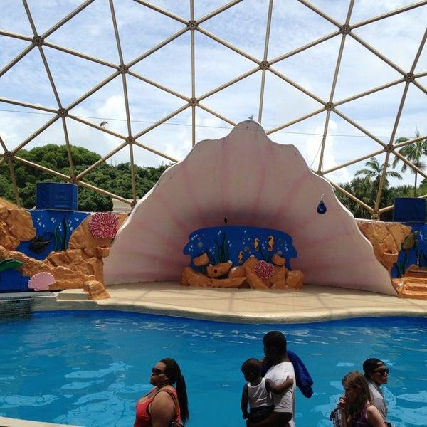 7/19/2013에 Soraia Aparecida A.님이 Miami Seaquarium에서 찍은 사진