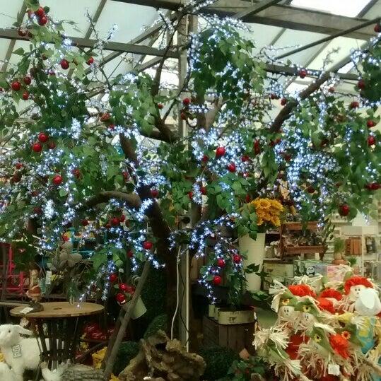 Photos At Summerhill Garden Centre Basildon Essex