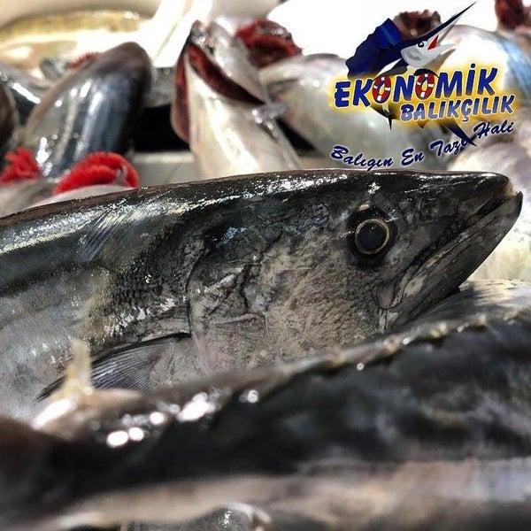11/17/2018 tarihinde Ekonomik Balık Restaurant Avanosziyaretçi tarafından Ekonomik Balık Restaurant Avanos'de çekilen fotoğraf
