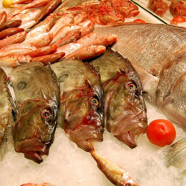 7/22/2014 tarihinde Ekonomik Balık Restaurant Avanosziyaretçi tarafından Ekonomik Balık Restaurant Avanos'de çekilen fotoğraf