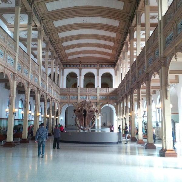 10/20/2013にAndrea G.がMuseo Nacional de Historia Naturalで撮った写真