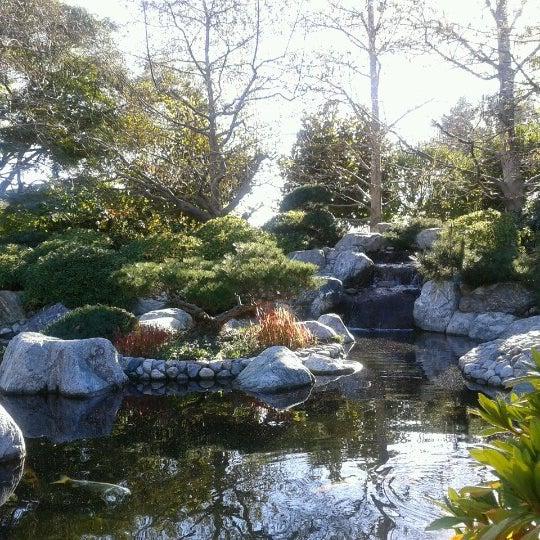 1/8/2013にIsaac C.がJapanese Friendship Gardenで撮った写真