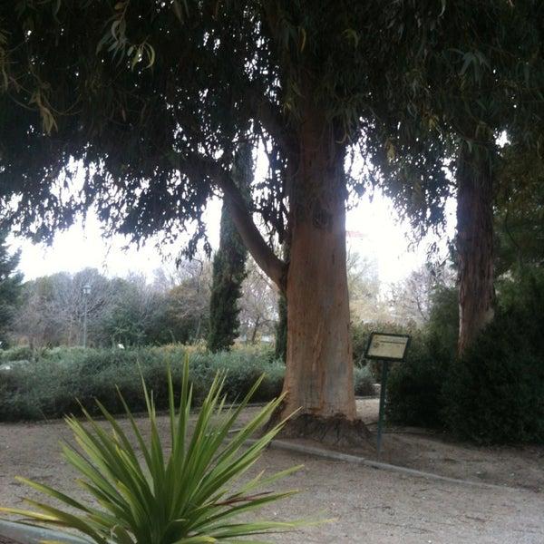 Photos At Jardin Botanico Parque De Pradolongo Garden In Madrid