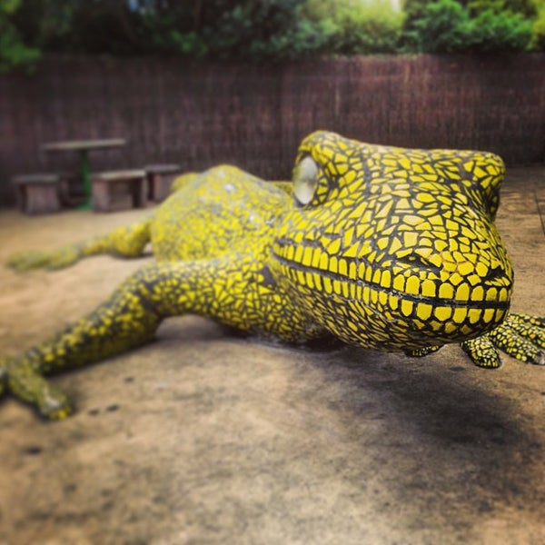 2/7/2013 tarihinde Raymond L.ziyaretçi tarafından Auckland Zoo'de çekilen fotoğraf
