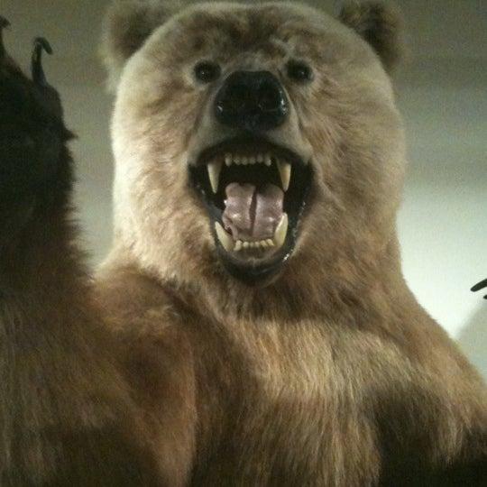 Foto tirada no(a) Las Vegas Natural History Museum por Nycole em 2/26/2012