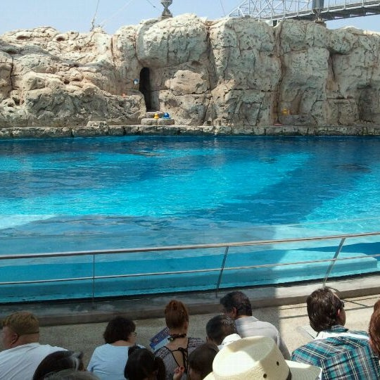 8/27/2011にPizzie L.がTexas State Aquariumで撮った写真