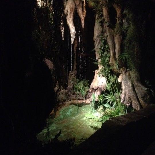 รูปภาพถ่ายที่ El Bosc de les Fades โดย Laura M. เมื่อ 2/29/2012