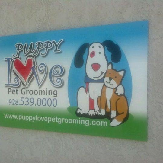Photos At Puppy Love 998 W 16th St