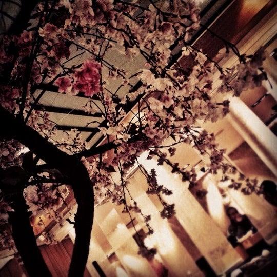Снимок сделан в Yume пользователем buratina 4/14/2012