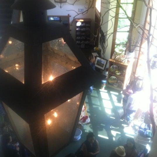 Foto scattata a Peju Province Winery da Melissa D. il 7/14/2012