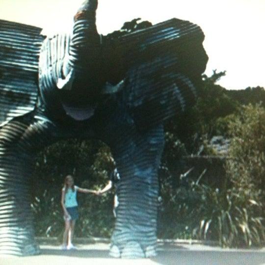 2/9/2011 tarihinde Bobo N.ziyaretçi tarafından Auckland Zoo'de çekilen fotoğraf