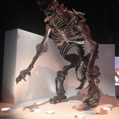 Foto scattata a Houston Museum of Natural Science da Karla T. il 8/5/2012