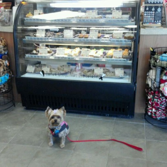 Three Dog Bakery Spaw Village Pointe Now Closed