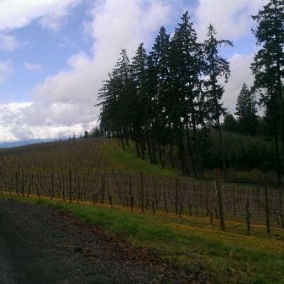 Photo prise au Winter's Hill Estate Vineyard & Winery par Jennifer D. le3/31/2012