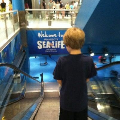 8/4/2012에 Dee D.님이 SEA LIFE Minnesota Aquarium에서 찍은 사진