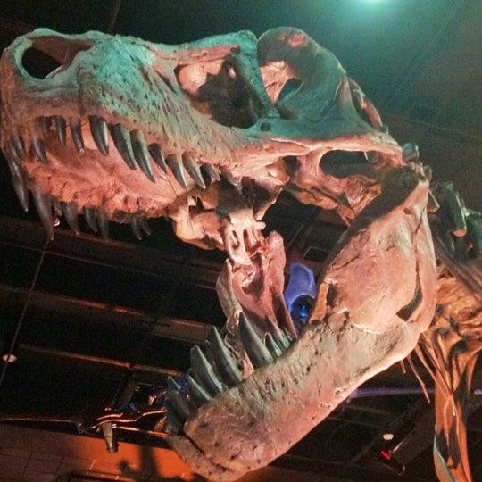 Foto scattata a Houston Museum of Natural Science da eRiC r. il 6/23/2012