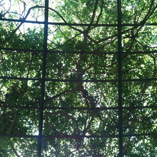 Foto scattata a Conservatory Garden da Christopher D. il 6/25/2012