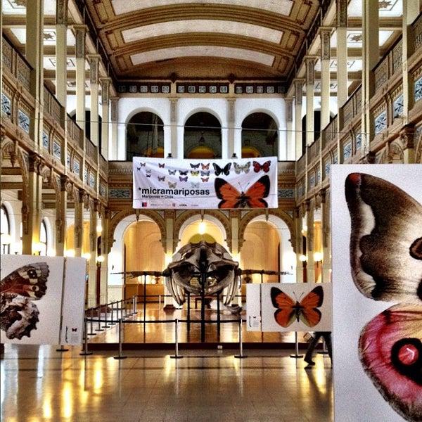 8/15/2012にIan M.がMuseo Nacional de Historia Naturalで撮った写真