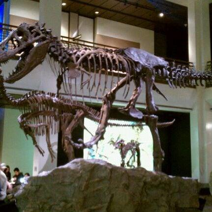 Foto scattata a Houston Museum of Natural Science da Hubert L. il 1/3/2011