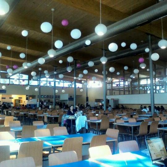 Casino Universidad San Sebastian Ferme Maintenant Cruz 1577 Interior