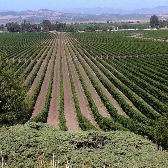 Das Foto wurde bei Gloria Ferrer Caves & Vineyards von Keith P. am 8/10/2011 aufgenommen